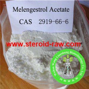 melengestrol-acetate-1